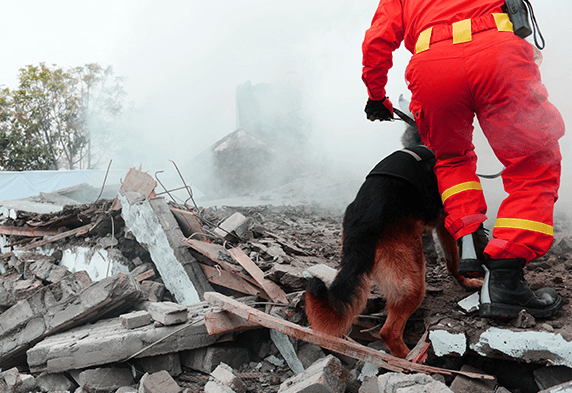 Rescuer with dog going through rubble.